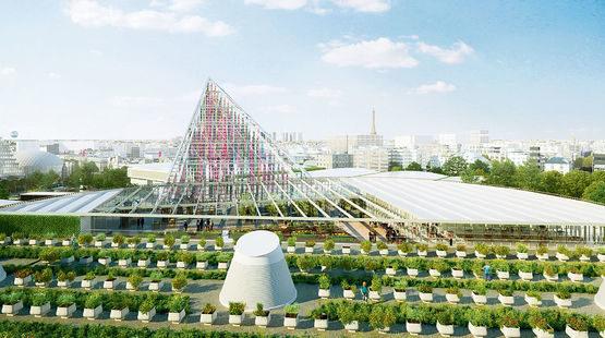 Les-toits-de-Paris-deviennent-jardins
